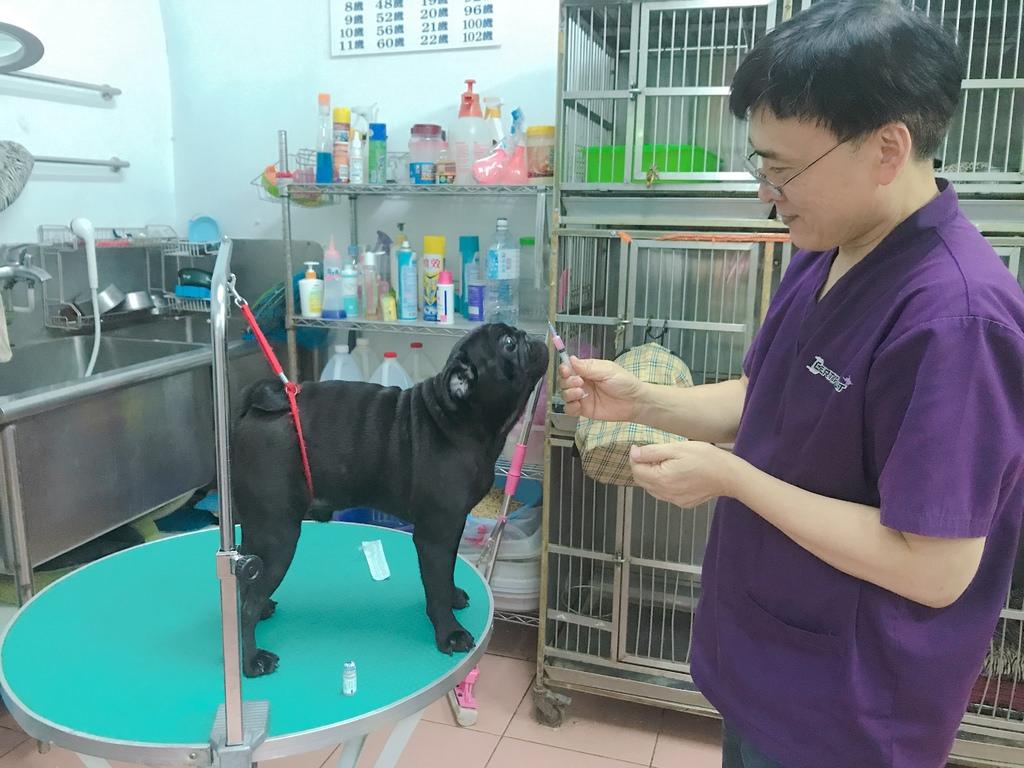 雅旺動物醫院 一個不愛動物的獸醫師